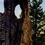 Moonset, Hat_Point_Oregon, Saddle_Creek_campground_Oregon, Hells_Canyon, Seven_Devils_Idaho