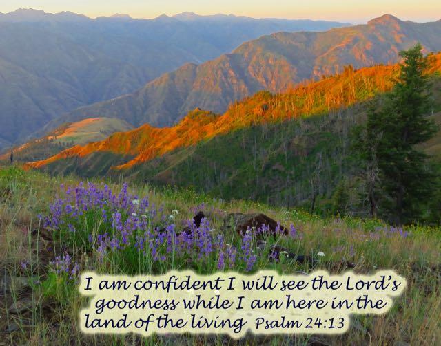 Psalm24_13
