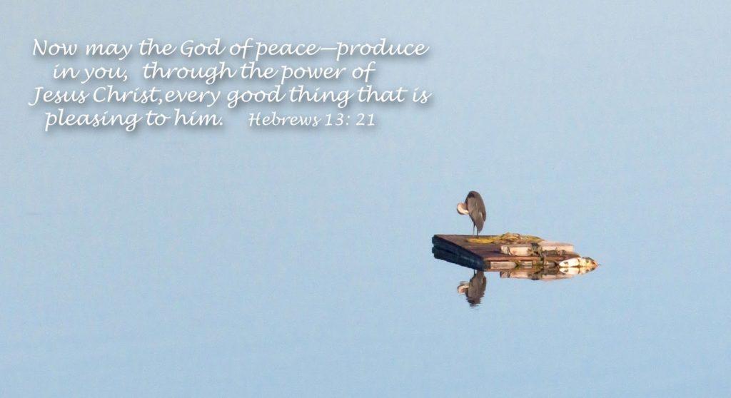 Hebrews_13_21_image_picture, Lopez_Island, San_Juan_Islands, great_blue_heron, heron-1
