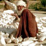 Afghan man, Mazaar i Sharif