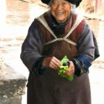 elderly Nosu woman vegetable seller