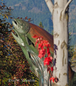Kokanee sculpture