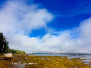 Acadia. Bay boulder color distance fall color
