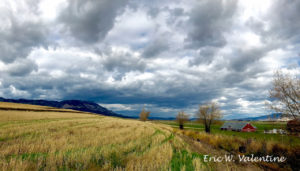 Mt Emily barn, Grande Ronde Valley