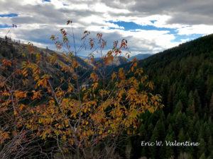 Minam Canyon, Wallowa County