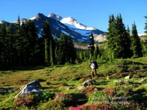 Mt Jefferson Wilderness, Pacific Crest Trail