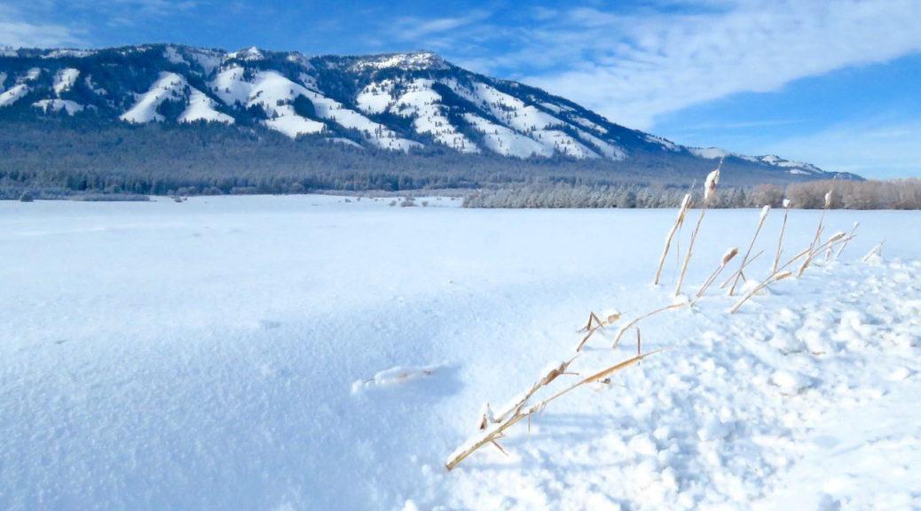 Mt Emily Union County