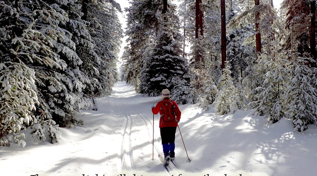 Cross country skiing at the Meacham Divide, Blue Mts Oregon