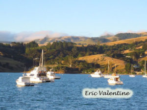 Akaroa Harbor