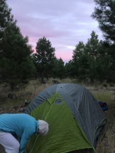 Camping Baker County, Dooley Mt camping