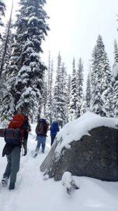 Troop 514 hiking to Hoffer Lake