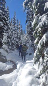 Troop 514 hiking in snow