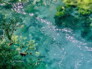 McKenzie River Oregon, Sahlie Falls