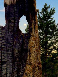 Moonset hat point oregon saddle creek campground oregon hells canyon seven devils idaho