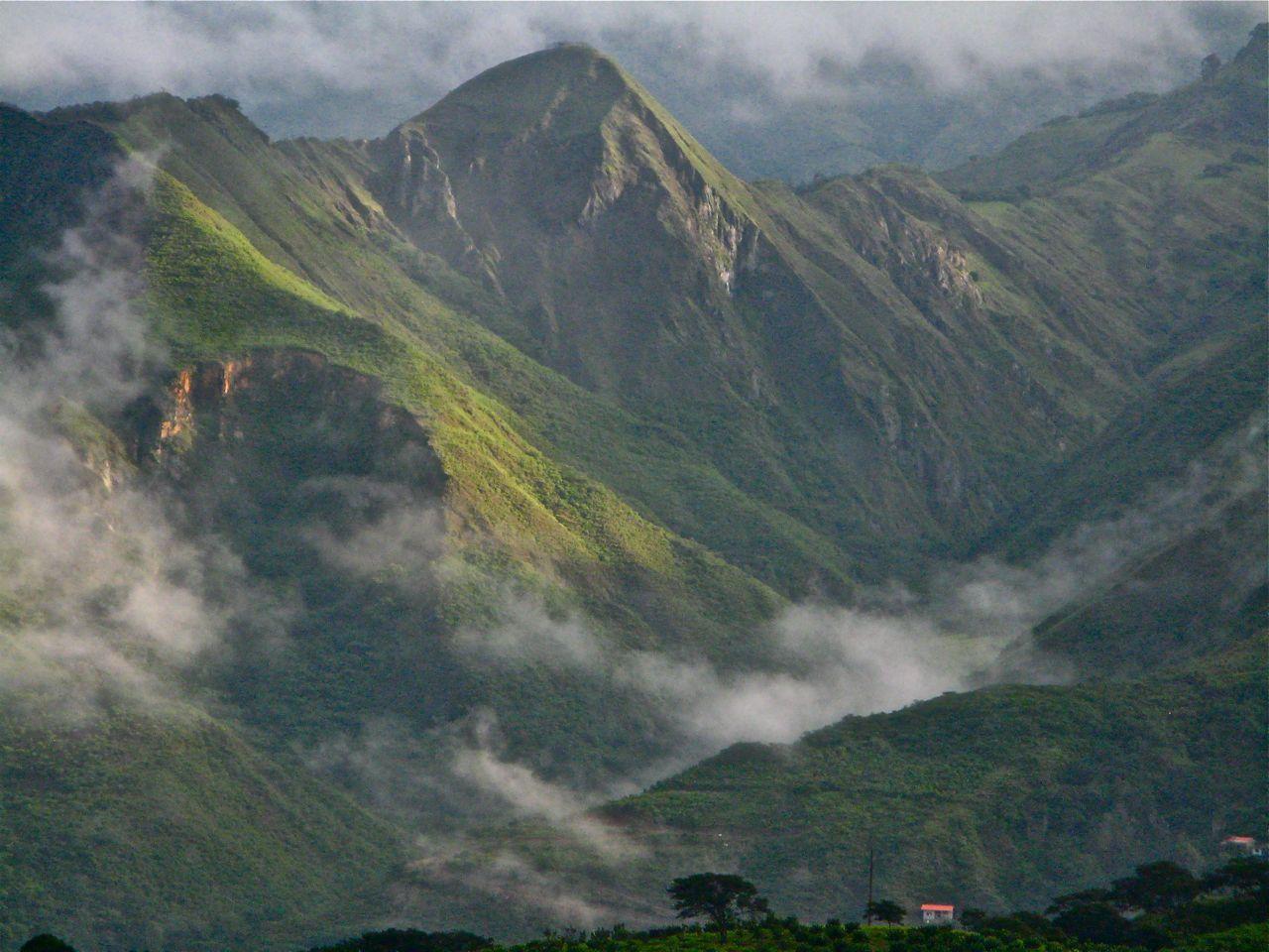 Izchayluma vilcabamba cloud forest