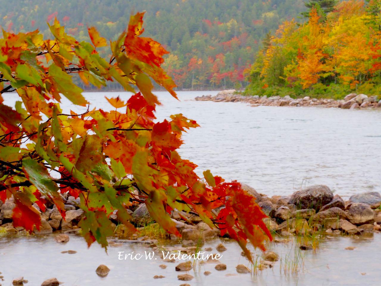 Jordan pond red bough and fall color hillside wm