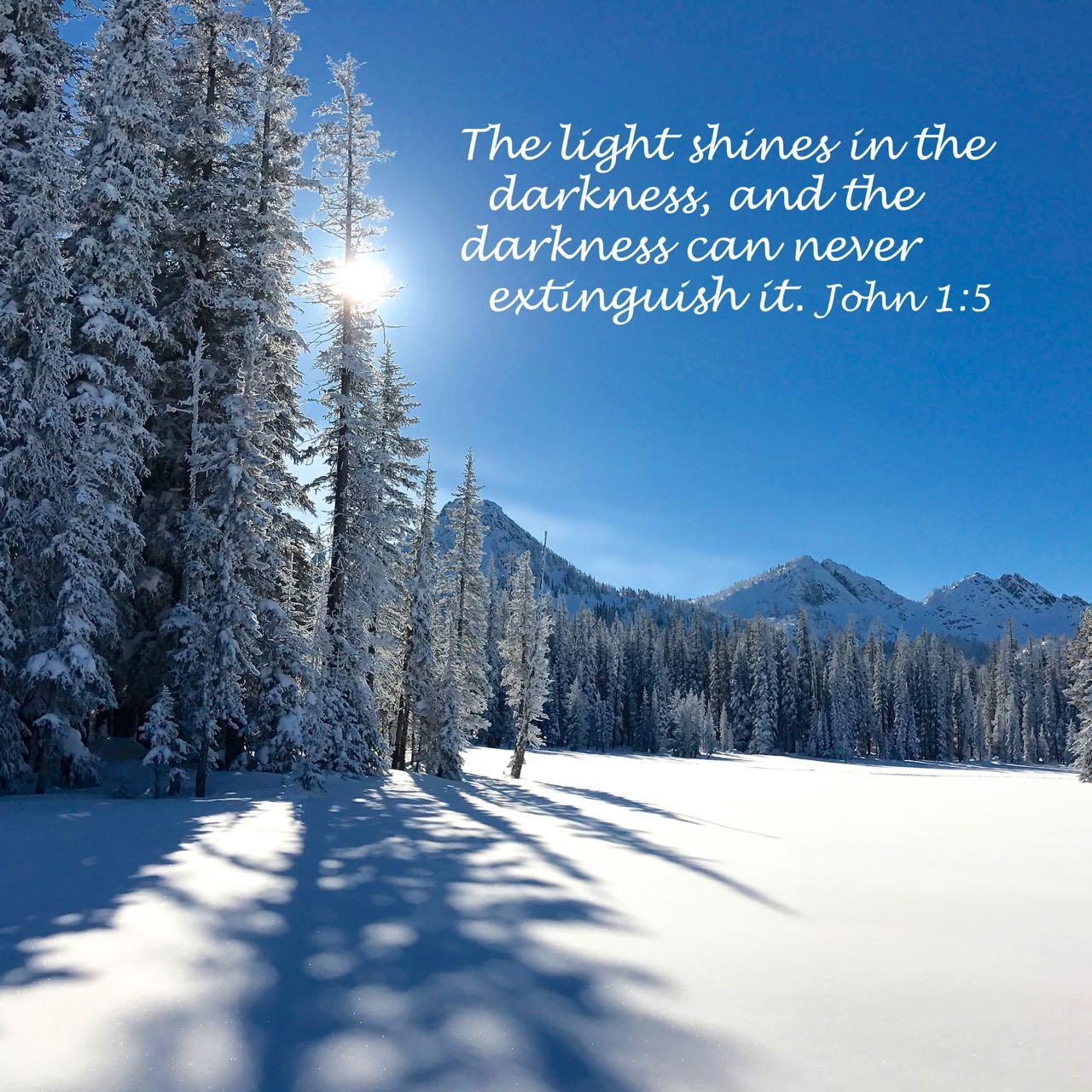 John 1 5 light shines