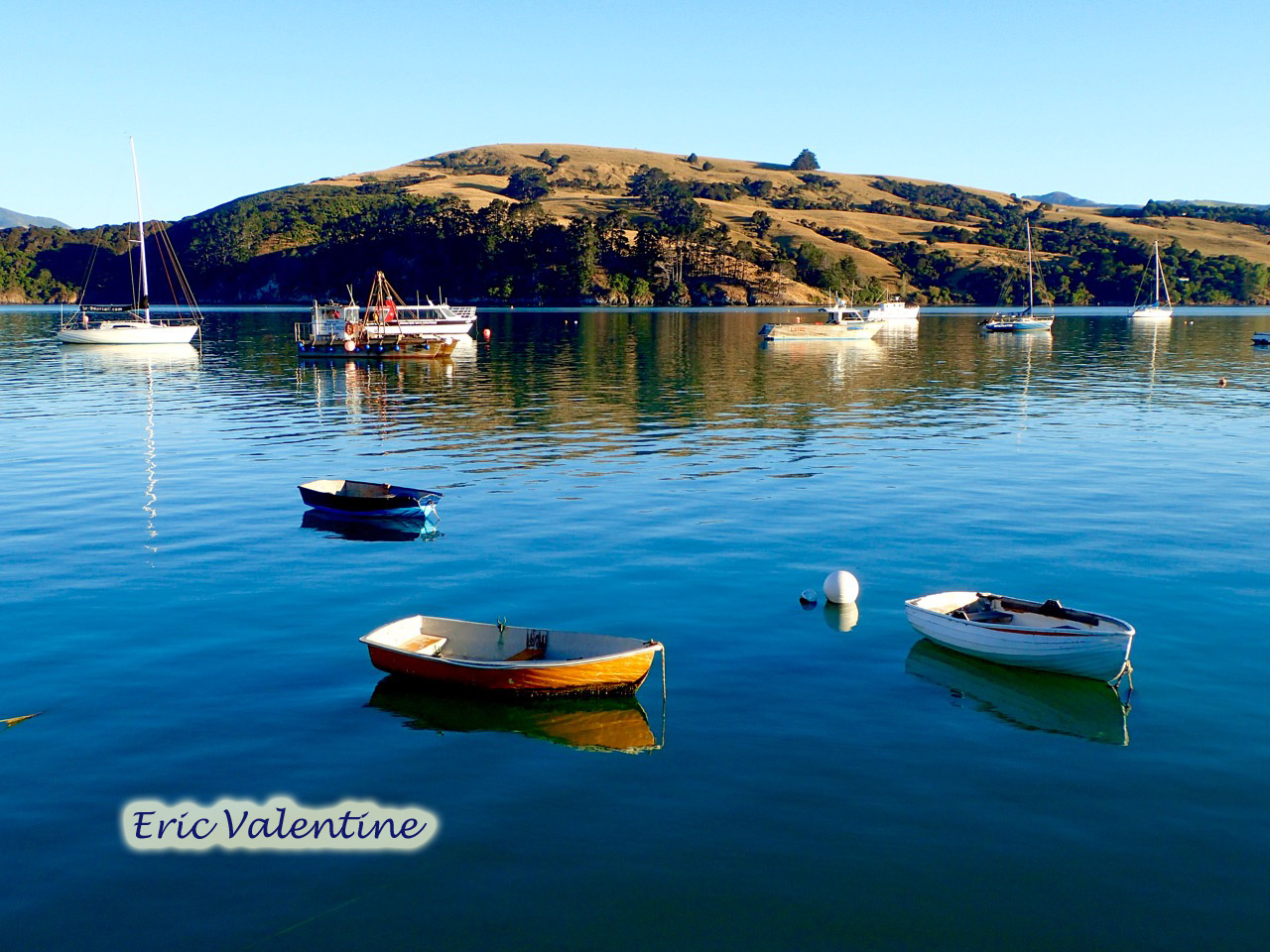 Ac akaroa harbor wm