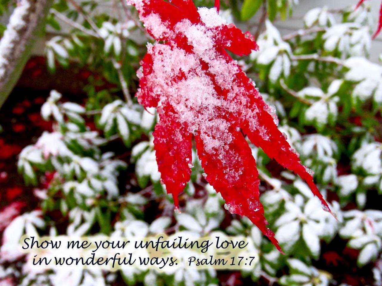 Psalm 17 7