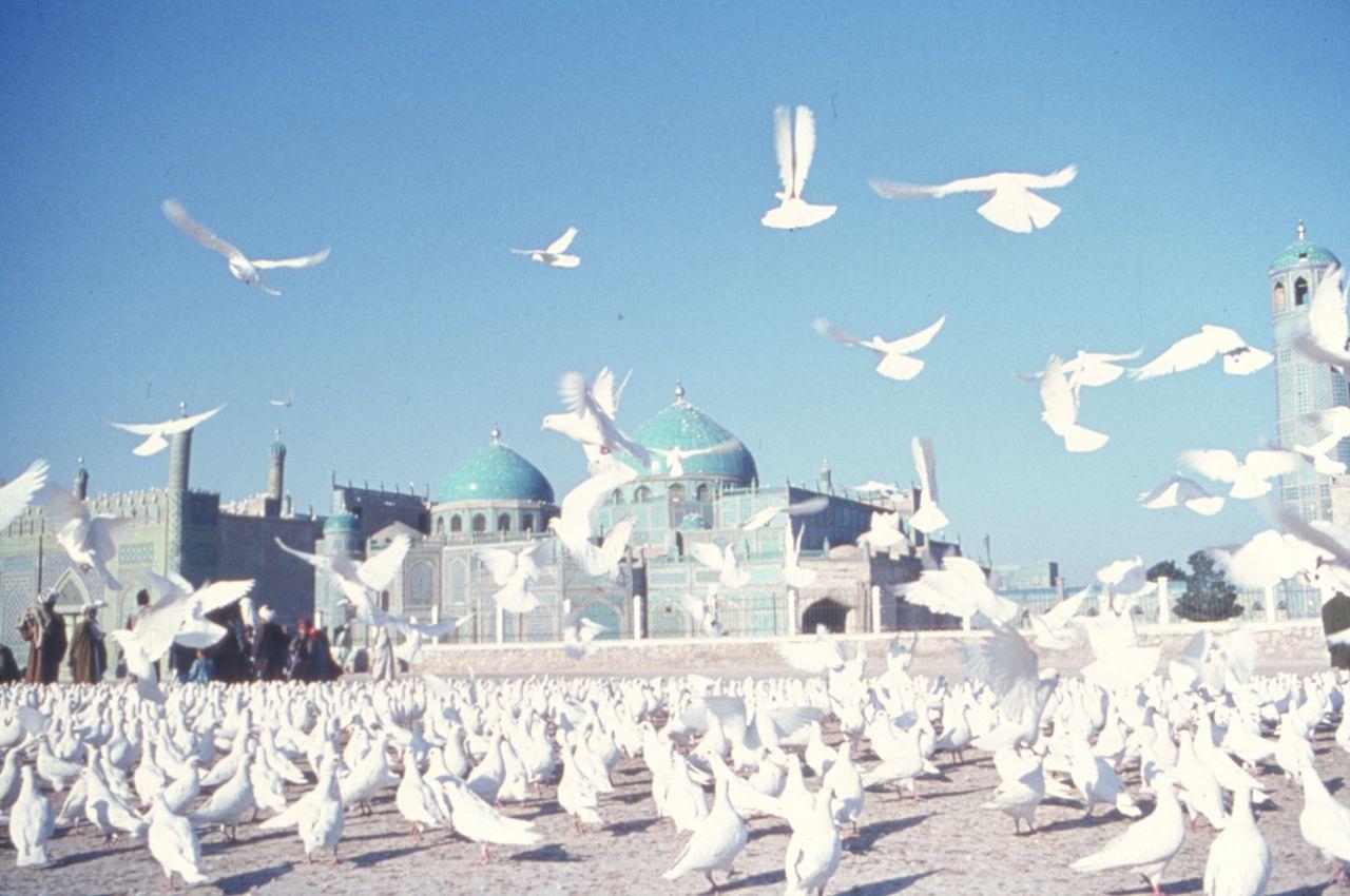 Mazaar i sharif mosque mazaar i sharif