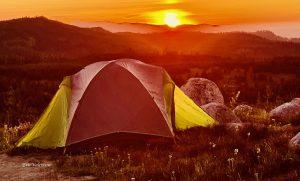 Wm tent glow